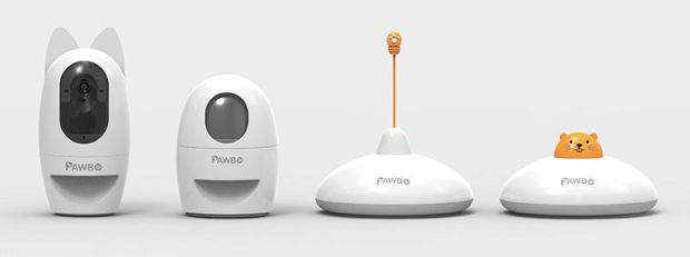 pawbo-2-digitally