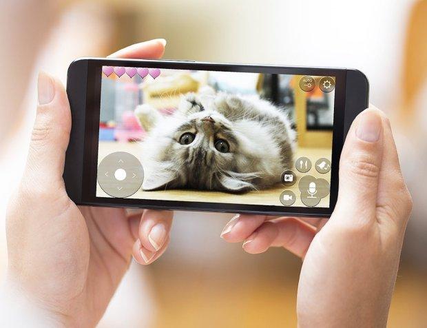 Pawbo-Wi-Fi-Pet-Cam-and-Treat-Dispenser-0digitally.jpg